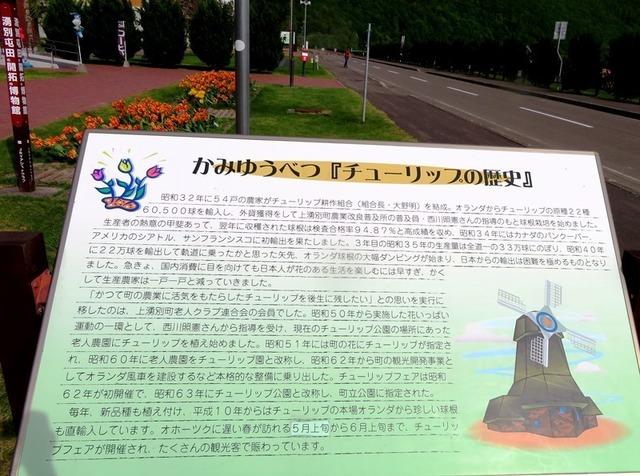 20190520かみゆうべつチューリップの歴史.JPG