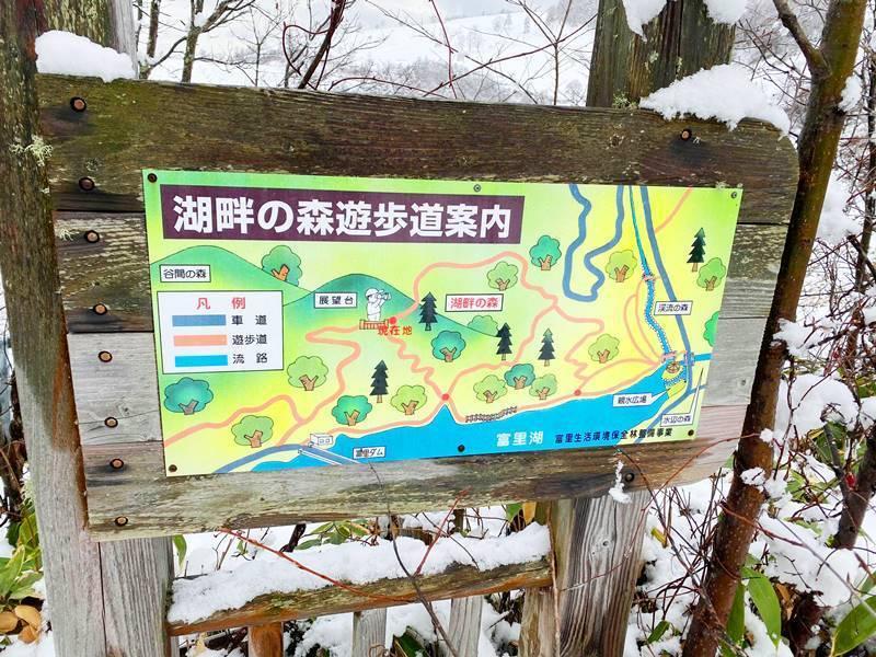 20201110サイケデリック ピエさん富里湖写真 (1).jpg