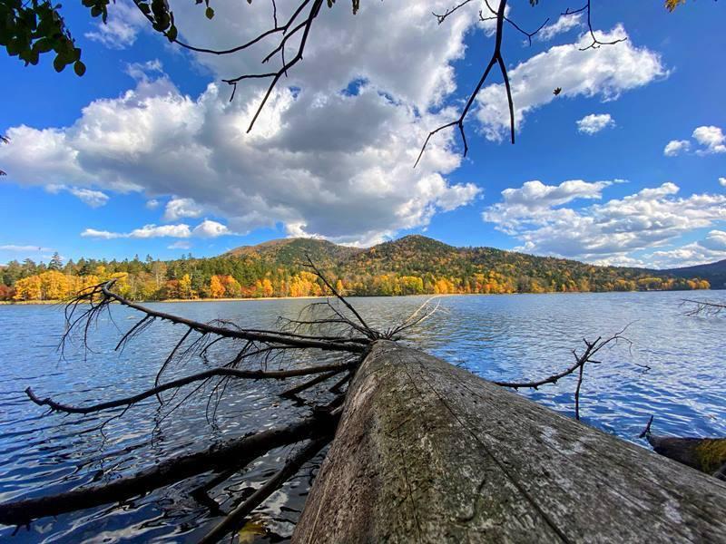 2020年10月 チミケップ湖 (5).jpg