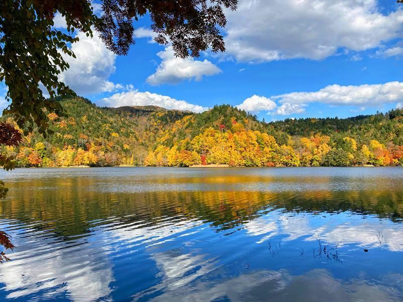 2020年10月 チミケップ湖 (8).jpg