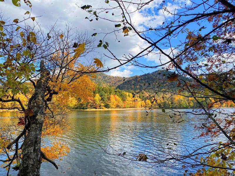 2020年10月 チミケップ湖 (9).jpg
