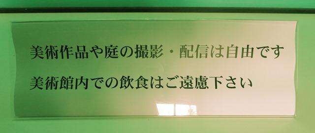 IMG_2345.JPG